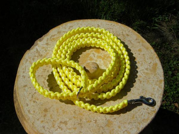 yellow-leash-1-58.jpg
